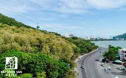 Bà Rịa - Vũng Tàu: Tiêu chí để lựa chọn dự án đầu tư khu du lịch sinh thái trong rừng phòng hộ
