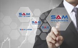 SAM Holdings giảm phân nửa lãi ròng về 3,5 tỷ đồng, không còn doanh thu bất động sản