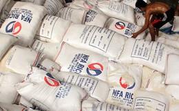 Ai Cập mời thầu quốc tế nhập khẩu 20.000 tấn gạo