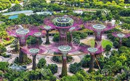"""Singapore đẩy mạnh tham vọng """"ngầm hóa"""" lấy chỗ xây nhà"""