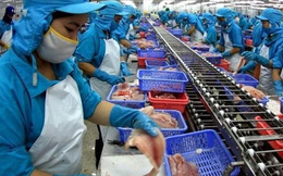 Thủy sản Mekong (AAM): Quý 1 lãi 3 tỷ đồng tăng 11% so với cùng kỳ