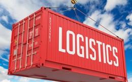 Prosper Logistics chi 240 tỷ đồng mua 15% cổ phần của Transimex (TMS)