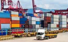 Transimex (TMS): Kế hoạch lãi đi ngang, ước đạt 266 tỷ đồng trong năm 2019