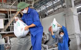 Thị trường phân bón bị siết chặt, Hóa chất Lâm Thao (LAS) đặt mục tiêu LNTT năm 2019 tăng nhẹ 4% so với cùng kỳ, ước đạt 162 tỷ đồng
