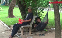 Video: Dân Hà Nội trốn gốc cây, gầm cầu tránh cái nóng 42 độ C