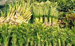 Thủ tướng biểu dương DN dùng lá chuối gói thực phẩm, kêu gọi giảm thiểu sử dụng túi nilon