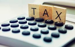 Tại sao Bộ Tài chính không đề xuất miễn thuế cho doanh nghiệp vừa mà chỉ đề cập đến doanh nghiệp nhỏ và siêu nhỏ?