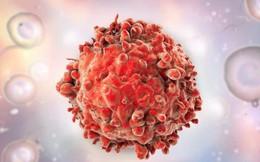 Trong 10 năm nữa sẽ có thuốc chữa ung thư, các nhà khoa học hàng đầu của Vương quốc Anh tuyên bố