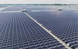 Bình Thuận khánh thành nhà máy điện mặt trời trị giá 1.017 tỷ đồng