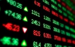 Phiên 28/5: Thị trường rung lắc dữ dội, khối ngoại mua ròng phiên thứ 2 liên tiếp trên HoSE