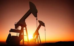 Thị trường ngày 28/05: Giá dầu, vàng, cao su và kim loại đồng loạt tăng
