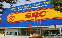 SRC tăng gấp đôi sau 5 tháng, một cá nhân bất ngờ rút lui khỏi đợt đấu giá thoái vốn nhà nước