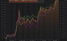 Thị trường ngày 29/05: Giá dầu và cao su tiếp tục tăng, quặng sắt đạt đỉnh mới, giá ngô cao nhất 3 năm