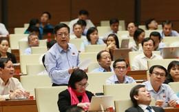 Vinaconex, Sabeco, Cảng Quy Nhơn vào phiên tường thuật trực tiếp khi Quốc hội thảo luận về kinh tế xã hội