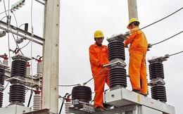 EVN đấu giá toàn bộ cổ phần Xây dựng điện 3 (TV3), giá khởi điểm 76.700 đồng/cp