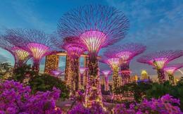 """Những điều cần biết để tận hưởng chuyến du lịch Singapore theo phong cách """"sang chảnh"""" với giá rẻ"""