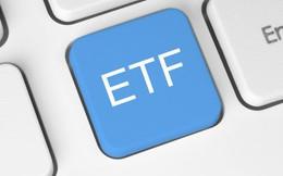Vì sao mua chứng chỉ quỹ ETF là lựa chọn tốt nhất cho các nhà đầu tư nhỏ lẻ?