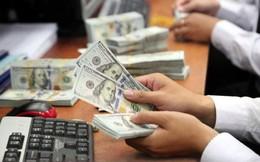 Chênh lệch lãi suất VND và USD thu hẹp có thể gây rủi ro cho tỷ giá?