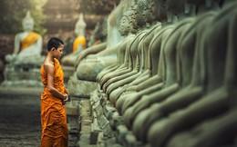 Ở đời, học được cách cúi đầu cũng là một loại trí tuệ: Muốn đứng trên thiên hạ, phải khắc cốt ghi tâm 4 ân nhân này