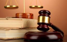 06 Luật có hiệu lực thi hành từ ngày 01/7/2019