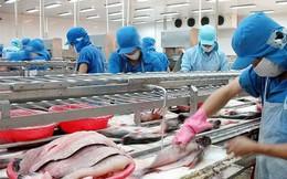 """Lo ngại thị trường khiến cp lao dốc, lãnh đạo Vĩnh Hoàn khẳng định: """"XK thuỷ sản thì giá lên xuống là chuyện luôn xảy ra, quan trọng vẫn là nhu cầu"""""""