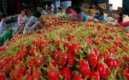 """Đằng sau chính sách """"siết chặt"""" nhập khẩu từ Việt Nam của Trung Quốc là gì?"""