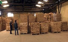 """Doanh nghiệp gỗ """"tỉnh táo"""" khi đầu tư FDI từ Trung Quốc gia tăng"""