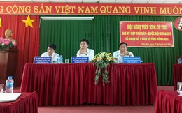 """Việc xử lý bà Phan Thi Mỹ Thanh """"không rốt ráo""""?"""