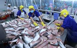 """Hàn Quốc vẫn còn là thị trường khá """"xa lạ"""" với cá tra Việt Nam"""