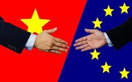 """WTO đã """"lỗi thời"""" còn Hiệp định EVFTA sẽ là gợi ý cho một hướng đi mới?"""