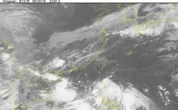 Vùng áp thấp mạnh lên, khả năng ảnh hưởng trực tiếp đến Bắc và Bắc Trung Bộ