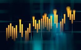 Nửa đầu năm 2019: Tăng trưởng nhiều quỹ lớn thua xa VN-Index, Hestia và Passion Investment gây bất ngờ với performance dẫn đầu thị trường
