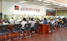 Nhiều Thông tư trong lĩnh vực ngân hàng sẽ có hiệu lực từ tháng 7 này