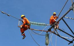 Tư vấn xây dựng điện 2 (TV2): Triển khai phương án trả cổ tức bằng cổ phiếu tỷ lệ 62,5%