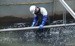 Xả triệu khối nước vào sông Tô Lịch, ở Nhật phải báo trước 3-5 ngày