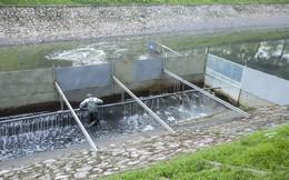 """Chuyên gia Nhật Bản đưa ra 6 tiêu chí """"hồi sinh"""" sông Tô Lịch"""