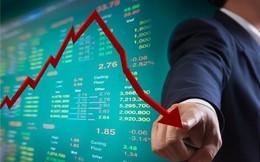 Cổ phiếu Thuỷ điện Bắc Hà giảm sâu, Chứng khoán Bảo Việt vẫn muốn thoái sạch vốn