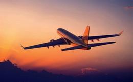 Hơn 20 chuyến bay bị ngừng khai thác do ảnh hưởng từ bão Wipha