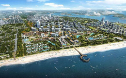 Đồng ý đề nghị tạm dừng quy hoạch Phú Quốc thành đặc khu