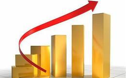 Thị trường ngày 13/8: Vàng lại vượt ngưỡng 1500 USD/ounce, cao su bất ngờ tăng gần 10%