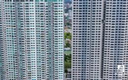 Đồng Nai: Chấp thuận chủ trương đầu tư Dự án khu nhà ở xã hội tại phường Bảo Vinh, thành phố Long Khánh