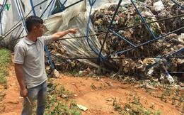 Nhà vườn trắng tay, lũ rác vùi chôn hàng tỷ đồng tiền rau, hoa