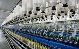 Thị trường đầu ra Trung Quốc khó khăn, Damsan báo lãi quý 2 giảm mạnh 76%