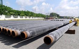 PVCoating (PVB) điều chỉnh lỗ thêm 8% sau kiểm toán