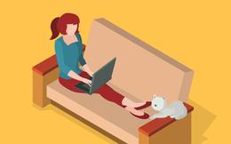 Khoa học đã chứng minh: Dân công sở năng suất hơn khi làm việc ở nhà!