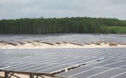 PECC2 (TV2): Hoàn thành phát điện mặt trời trước 30/6, doanh thu tăng 3 lần lên 1.820 tỷ đồng