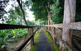 Báo quốc tế nói gì về vườn quốc gia Cát Tiên?