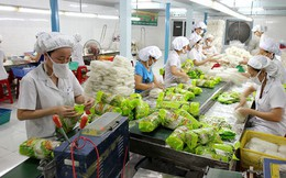 Xuất nhập khẩu thực phẩm sang Trung Quốc phải ghi nhãn theo quy định mới kể từ ngày 1/10