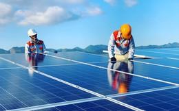 FECON báo lãi 113 tỷ đồng 6 tháng đầu năm 2019 nhờ bán Dự án điện mặt trời Vĩnh Hảo 6