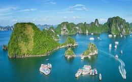 """TMS Group muốn """"đổ bộ"""" vào Quảng Ninh với hàng loạt dự án tại Hạ Long, Uông Bí, Cẩm Phả, Quảng Yên"""